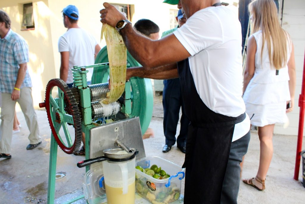 Sugarcane being squeezed for Cocktail Vigia at Finca Vigia in Cuba - Passports and Spice