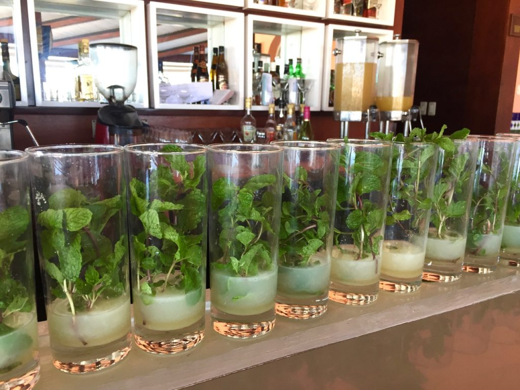 Mojito is Cuba's national drink and was one of favorite drinks of Ernest Hemingway in Cuba - Passports and Spice