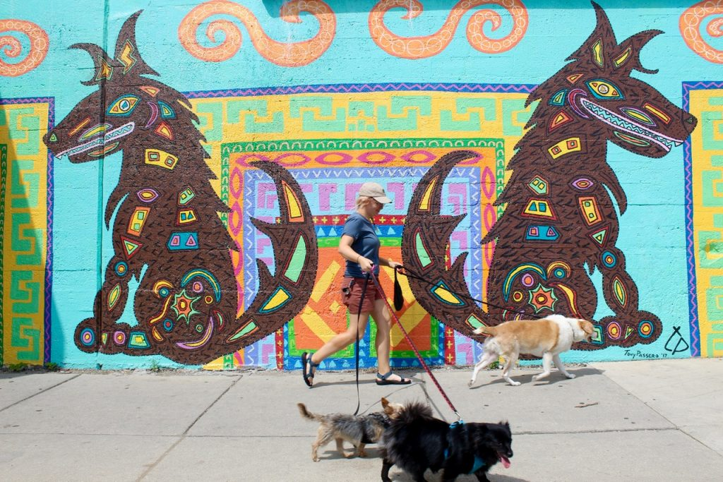 CoyWolf Mural isis one of awesome instagrammable walls in Chicago - Passports and Spice