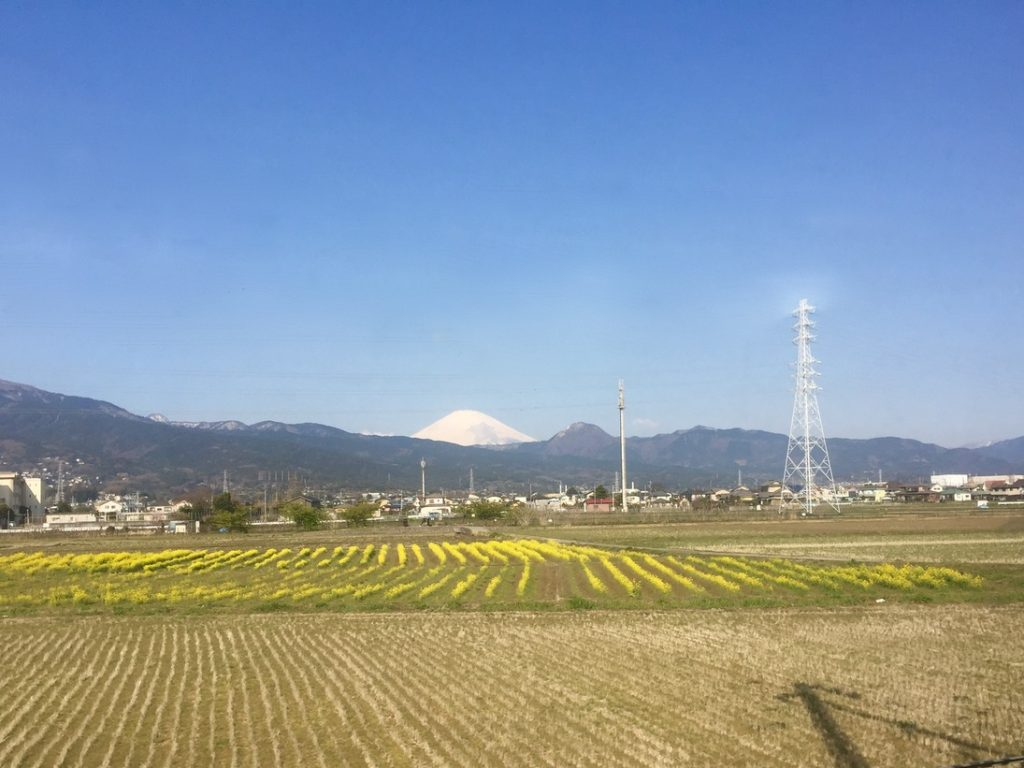 View of Mt. Fuji from Odakyu Romance Car on a day trip from Tokyo - Passports and Spice
